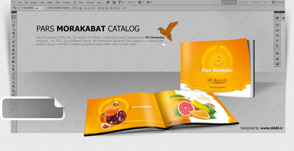 طراحی کاتالوگ شرکت پارس مرکبات