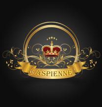 طراحی لوگو برند کاسپین فرانسه
