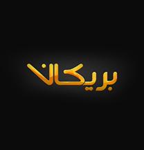 طراحی لوگو فارسی شرکت بریکان