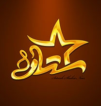 طراحی لوگو شرکت ستاره شهر
