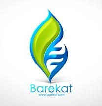 طراحی لوگو شرکت برکت