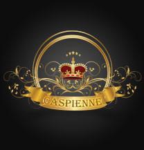 طراحی لوگو شرکت کاسپین