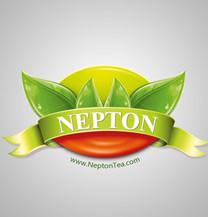 طراحی لوگو شرکت نپتون